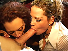 Content of Monica Mayhem - Mr. Donald Pump decided to host a contest to find the sexiest and most skilled apprent-ASS to hire to run one of his sexsessful companies. The search was difficult and it came down to just 2 girls. Kelly pretty much had the...